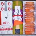 銘菓選柿羊羹1本・のし柿4枚・延寿柿2個・小柿1袋・プチ柿サブレ9枚