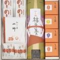 冬の銘菓選ちよ柿4個・柿羊羹1本・のし柿4枚・小柿1袋・延寿柿2個